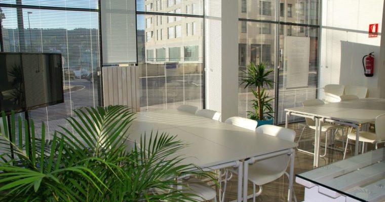 5 metod na wyciszenie przestrzeni biurowej